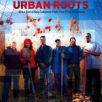 urban-roots-500x500-300x300